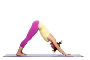 Downward Facing Dog Pose - adho mukha svanasana