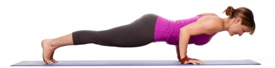Four limbed Staff Pose - Chaturanga Dandasana